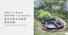 Ponds For Small Gardens, Garden Ponds, Ponds Backyard, Pond Plants, Aquatic Plants, Pond Kits, Outdoor Ponds, Pond Liner, Pond Pumps