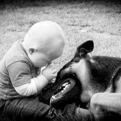 Must love babies and German Shepherds!!!