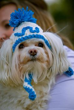 Dog Hat with Inital by KawaiiKrochetDesigns on Etsy, $14.25