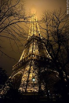 an amazing view of the effiel tower