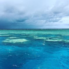 Wasn't the sunniest of days but the Reef is amazing. All those Green spots are full of Coral Reef and lots of life. White Tip Reef Sharks Green Turtles Parrot Fish and Clown Fish to name a few.  #greatbarrierreef #queensland #qld #australia #reef #gbr #amazing #sharks #turtles #fish #seeaustralia #australiagram #igaustralia #boat #aus #oz by jet_gts http://ift.tt/1UokkV2