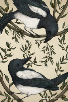 """crossconnectmag: """" Nature-Inspired Illustrations by Jessica Roux Jessica Roux is a freelance illustrator and plant & animal enthusiast. She is originally from the woodlands of North Carolina, where. Art And Illustration, American Illustration, Magpie Tattoo, Rabe, Beatrix Potter, Freelance Illustrator, Art Plastique, Beautiful Birds, Folk Art"""