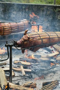 Discover thousands of images about hand crank Asado Grill, Bbq Grill, Fire Cooking, Outdoor Cooking, Backyard Bbq Pit, Bbq Smoker Trailer, Pig Roast, Rustic Restaurant, Fire Pit Designs