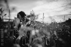 engagement photos in a corn maze?
