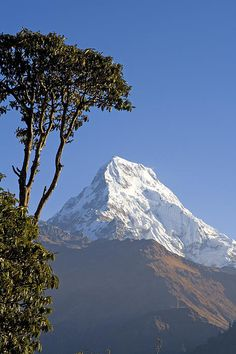 Annapurna, Nepal; photo by Walter Quirtmair Monte Everest, Nepal Art, Mountain Village, Mountain Paintings, Namaste Nepal, Bhutan, Mountaineering, Heaven On Earth, Nature Pictures