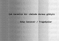 ;özet