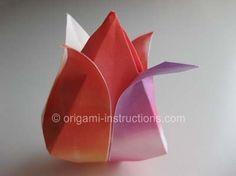 Origami Traditional Tulip Folding Instructions - How to Fold an Origami Traditional Tulip