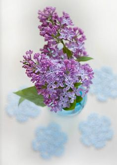 Who doesn't love lilacs?