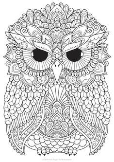 Murphy Owl adult coloring colouring in coloring pages Owl Coloring Pages, Free Adult Coloring Pages, Mandala Coloring Pages, Coloring Books, Zentangle, Bird Template, Indian Folk Art, Owl Art, Stuffed Animal Patterns