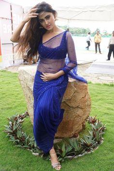 Sony-Charishta-Hot-IN-Blue-Saree-Photos