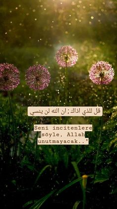 Muslim Quotes, Islamic Quotes, Bernard Shaw, Allah Islam, Catechism, Packing Tips For Travel, Sufi, Meaningful Words, Cool Words