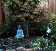 A Japanese Meditation Garden