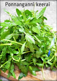Top health benefits and interesting facts of Ponnanganni keerai/Dwarf Copper Leaf
