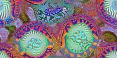 Jonathan McCabe   Morphogenesis inspiration
