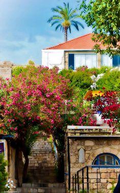A dream house in #Byblos بيت الأحلام ب #جبيل By Ibrahim Anouti