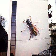world street art, urban art, graffiti art, street artists, urban artists, wall murals. #streetart jd