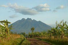 The-Virunga-Mountains.jpg (620×414) Africa