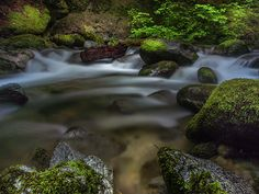 A cascade along Crystal Creek at Whiskeytown National Recreation Area in northern California.   Visit me at www.michelejamesphotography.com, follow me on Twitter @micheleyjames or like my Facebook Fanpage Michele James Photography.  #whiskeytownnationalrecreationarea #crystalcreek #water #michelejamesphotography #sharetheexperience