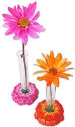 Detmers' vintage bugs and flowers
