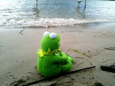 Sometimes I dream of Borkum - The world's most private search engine Kermit Der Frosch Meme, Kermit The Frog Meme, Funny Kermit Memes, Sapo Kermit, Funny Images, Funny Pictures, Frog Pictures, Funny Frogs, Jim Henson