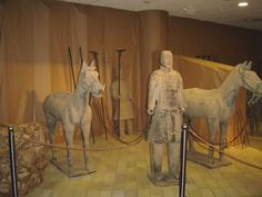 #magiaswiat #warszawa #zamek #podróż #zwiedzanie #europa  #blog #miasto #zjazd #kościół #zabytki #figury #park #łazienki #wilanów#muzeum #technika Carousel, Fair Grounds, Horses, Park, Blog, Animals, Europe, Animales, Animaux