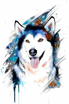 Siberian Husky watercolor painting by Pixie Cold from Germany Animal Paintings, Animal Drawings, Art Drawings, Watercolor Animals, Watercolor Paintings, Anime Body, Husky Drawing, Art Mignon, Dog Art
