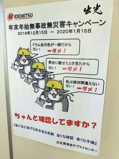 Neko, Kawaii, Memes, Cats, Funny, Gatos, Meme, Funny Parenting, Cat