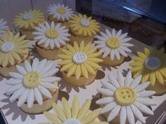 Fondant Daises and Buttons for Katrina's wedding