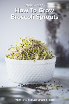 Learn how to grow broccoli sprouts at home with just a few simple ingredients. Broccoli sprouts are nutritional powerhouses, rich in the antioxidant compound sulforaphane. | StupidEasyPaleo.com #diy #sprouts #recipe #stepbystep #broccoli #paleo #paleodiet
