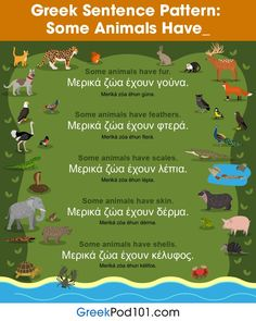 Greek sentence pattern - Some animals have...