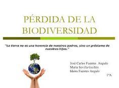 Resultado de imagen para que es la biodiversidad en mexico wikipedia