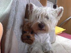 Wendy & Winnie