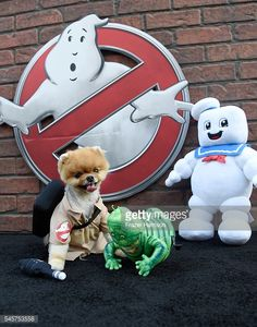 ... Jiffpom arrives at the Premiere of Sony Pictures' 'Ghostbusters' at TCL Chinese Theatre ...