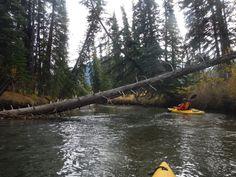 Kayak in Banff National Park