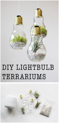 DIY Lightbulb Terrariums | 17 Easy DIY Home Decor Craft Projects mehr zum Selbermachen auf Interessante-dinge.de