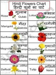 Zugehoriges Bild Zugehoriges Hindi Language Learning Hindi Alphabet Flower Chart