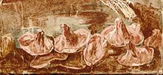 Herculaneum, Roman Wall Painting fungi detail, National Museum, Naples