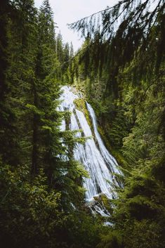 There are so many waterfalls in Oregon to explore, there's one to see no matter where you travel in the state! We're sharing the most famous Oregon waterfalls here, with tips, maps, and downloadable bucket lists to print too! #oregon #PNW #oregonstate #PacificNorthwest #portland #waterfalls Oregon Coast, Pacific Coast, Pacific Northwest, Oregon Road Trip, Oregon Travel, Oregon Waterfalls, Willamette Valley, Cascade Mountains, Eugene Oregon