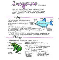 School Subjects, School Notes, Study Inspiration, Study Motivation, Self Improvement, Chemistry, Psychology, Homeschool, Knowledge