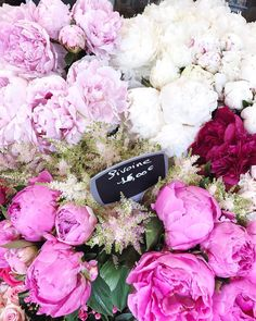 Peonies Season paris photography, paris peony season, sunday market in paris