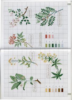 Cross Stitch Borders, Cross Stitch Rose, Cross Stitch Patterns, Simple Embroidery, Cross Stitch Embroidery, Hand Embroidery, Broderie Simple, Quilting Tips, Le Point