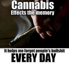 Cannabis effects the memory. It helps me forget people's bullshit every day From RedEyesOnline.net