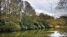 Worsley Woods ~ The lake in the woods looking very peaceful ~ JuYaroo @ flickr