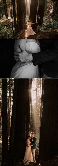 Intimate wedding at Limekiln State Park, Big Sur by Paige Nelson
