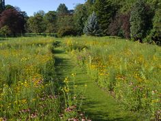 Leckhampton Prairie Garden