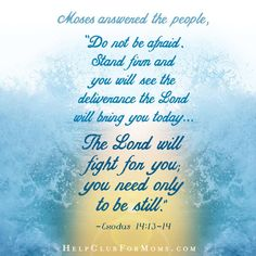 """Hopelessness is God's speciality.   """"The Lord will fight for you; you need only to be still."""" Exodus 14:14"""