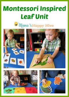 A colorful collection of Montessori inspired leaf unit activities for toddlers and preschoolers to enjoy this fall. Montessori Preschool, Fall Preschool, Preschool At Home, Toddler Preschool, Reggio, Infant Activities, Preschool Activities, Preschool Curriculum, Autumn Activities