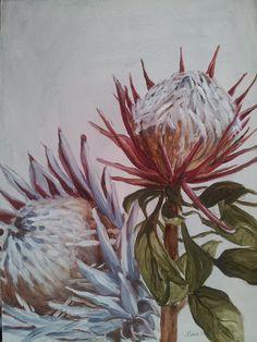 The Smosh Protea Art, Oil Painting Tips, Smosh, Art Projects, Project Ideas, Art Ideas, Decor Ideas, Art Plastique, Botanical Illustration