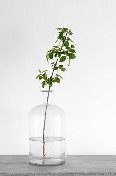 Pinterest•@olivriv•  Simple Modern Minimal Floral Blossom Decor Centerpiece