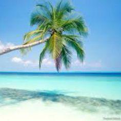 Playa en Tulum  México